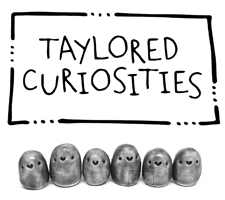 Taylored Curiosities